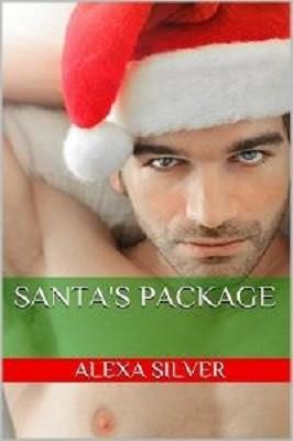 Santa's Package